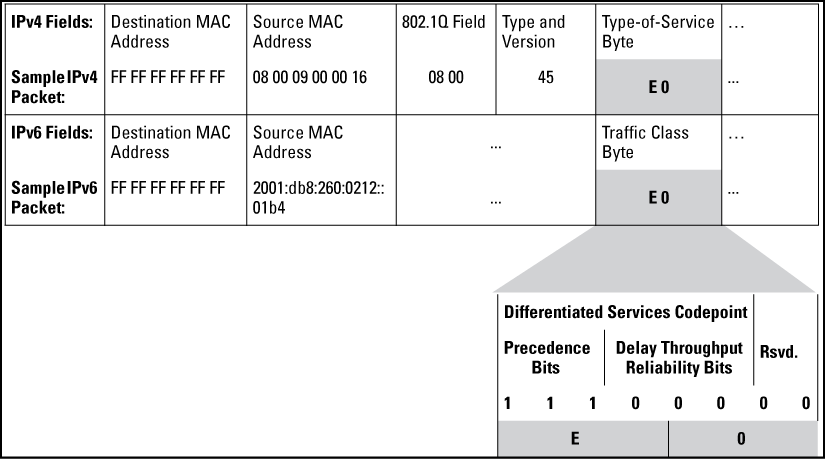IPv4 ToS IPv6 Traffic Class Byte With DSCP Codepoint And Precedence Bits